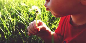 Învățăm copiii să respecte natura și planeta