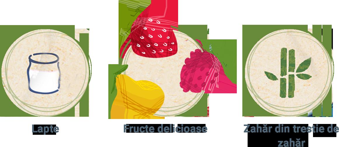lapte-zahar-fructe